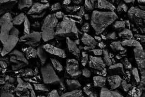Sprzedaż węgla orzech